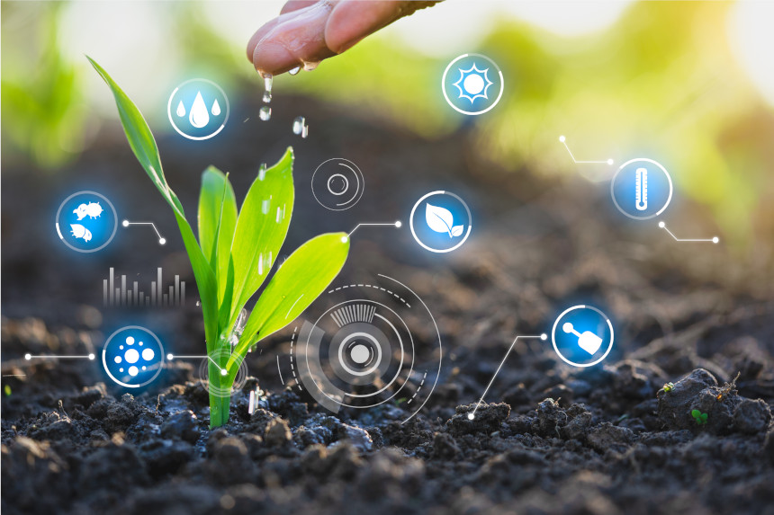 How Blockchain Can Revolutionize Agriculture